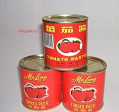 canned tomato paste 198g