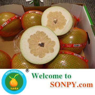 Honey Pomelo 1