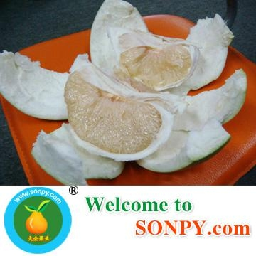Chinese Honey Pomelo 1