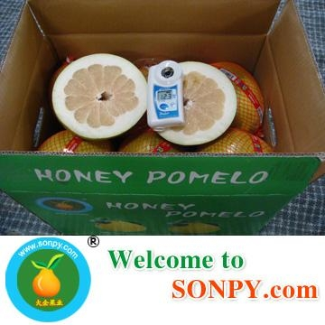 Chinese Pomelo 2