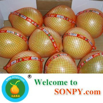Chinese Pomelo 4