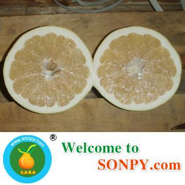 China Pomelo Fruit 3