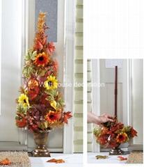 秋收半面太陽花盆景