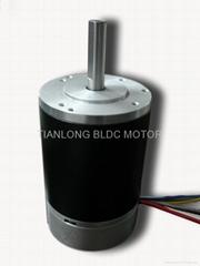 Dia.80 X 120mm BLDC Motor