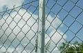 安平学校护栏网