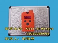 便携式天然气检测仪RBBJ-T型