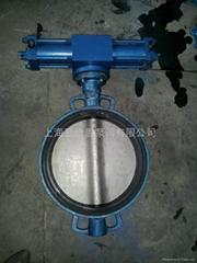 JIS F7480 hydraulic pressure wafer type