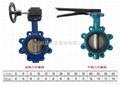 marine lug type butterfly valve JIS 5K