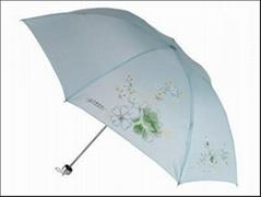 南寧天堂傘