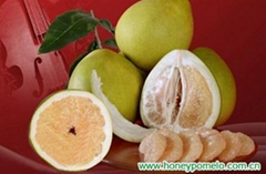 china pomelo fruit