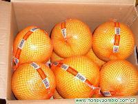 fresh fruit 3