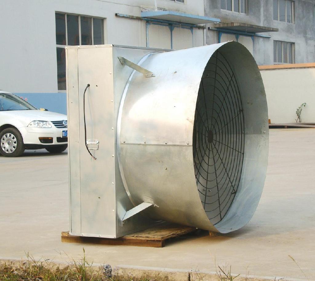 cone fan 2