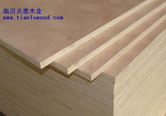 膠合板,建筑模板