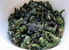 新茶上市 (觀音王)茶農直銷最新價格