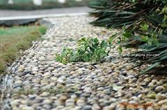 鹅卵石地坪