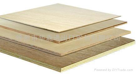 楊木多層木夾板 3
