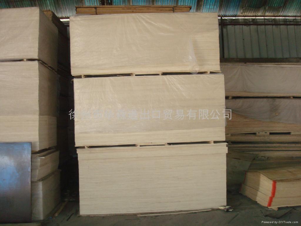 楊木多層木夾板 4