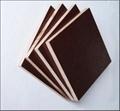 柳桉防水黑膜建築模板  1