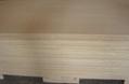 柳桉防水黑膜建築模板  2