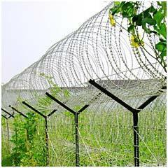 galvanized barbed iron w