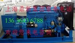 東風康明斯柴油發電機組220KW