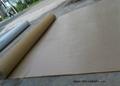 Film Protective  Carpet