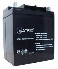 12V24AH铅酸蓄电池用于UPS不间断电源