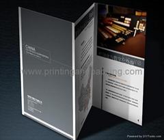 Leaflet(window fold)