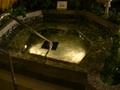 芳香草本浴 4