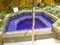 芳香草本浴 5