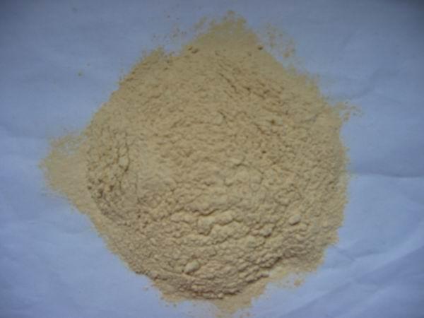 dehydrated onion powder 1