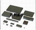 各種規格電子玩具磁鐵 5