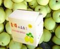 Ya Pears 1