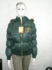 東莞新款女式棉衣
