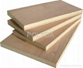 CARB Poplar Plywood,