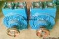 50YPB-8汽油滑片泵 1