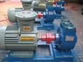 50YPB-8汽油滑片泵 2