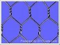 Hexagonal wire mesh/mighty hexagonal