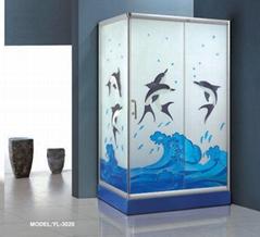 Shower Enclosure 3020