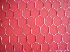 hexagonal wire mesh of size feet:3'x100', double twisted