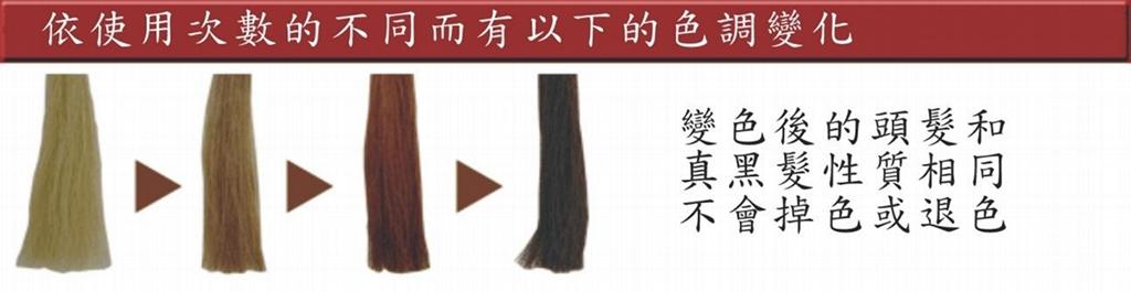 梦丹佩丝光彩SV植物护汝发全汉方成份可遮盖白发护发乳 1