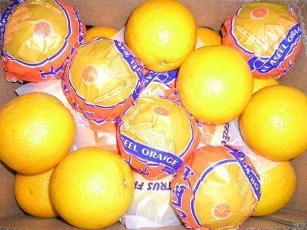 valencia orange 1