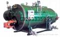 兰州燃气蒸汽锅炉 3