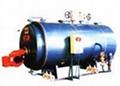 安康燃气蒸汽锅炉