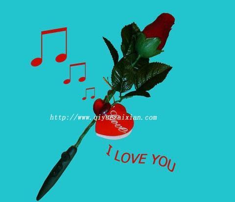 录音玫瑰 1