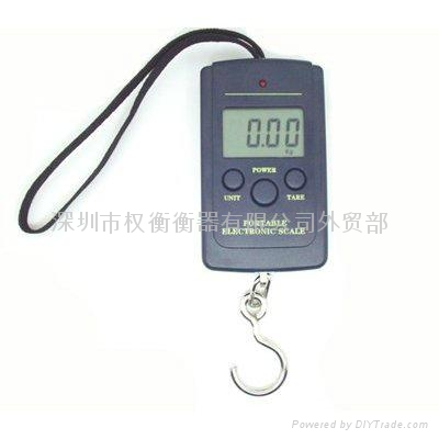 hanging  scale  fishing scale 1