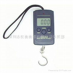 hanging  scale  fishing scale