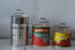 tomato paste with HACCP certificates