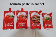 tomato paste in sachet & pouch with cap