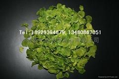 柳城縣天地自然食品有限公司
